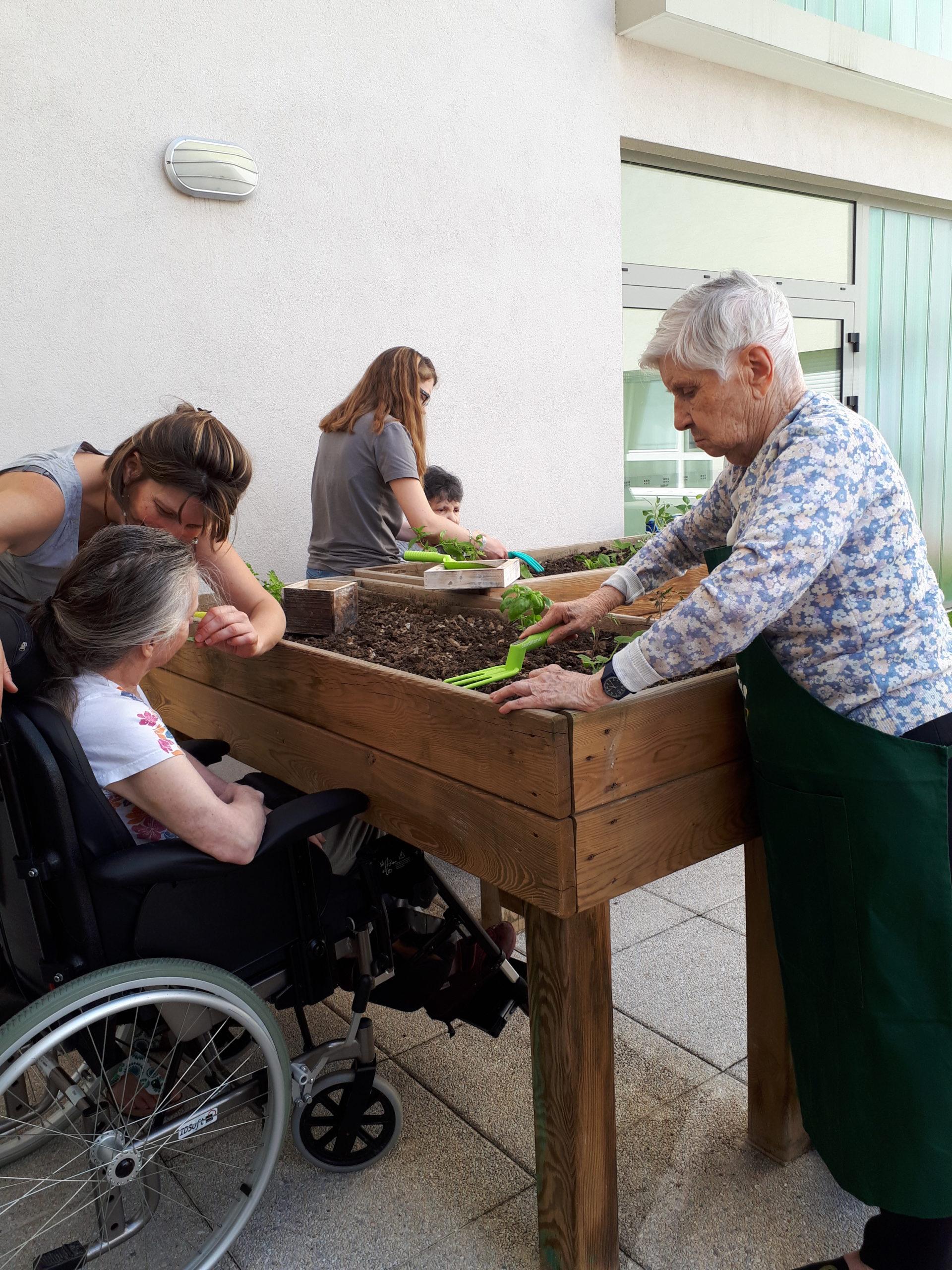 Terapia Hortícola con personas mayores